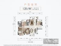 10#楼01户型
