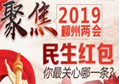 """2019柳州""""两会""""民生"""