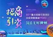 2020年柳州重点招商引资项目