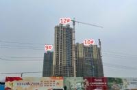 「颐华·雍和城」12月工进:10#落外架 12#楼外立面显现
