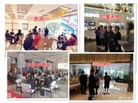 春节长假柳州楼市战绩 有楼盘来访超千组认购破8千万