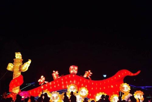 2016年柳州国际水上狂欢节灯会12日晚开幕 组图