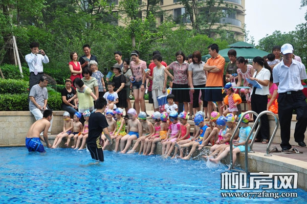"""「绿城·杨柳郡」14日""""海豚计划""""开班 """"小海豚""""相约畅游"""