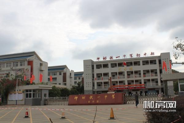 2020年柳东新区学区划分出炉 快看你家孩子今年在哪上学?