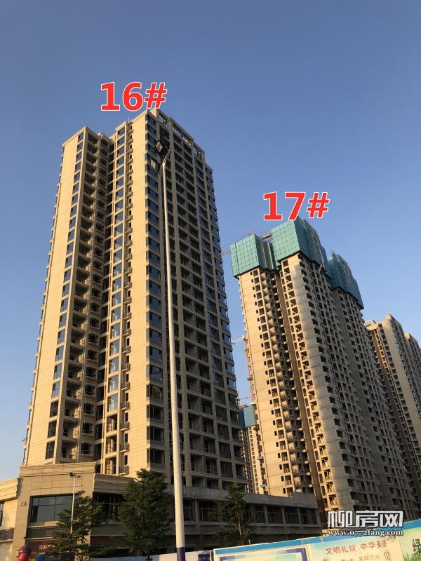 「晨华·金湾御府」7月工进:17#楼已封顶 12#楼即将封顶