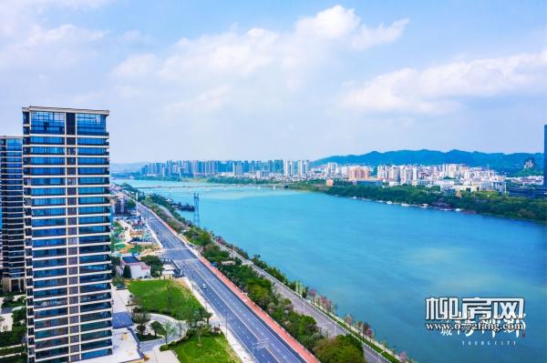 13绿城杨柳郡实景图20190506 (6).jpg