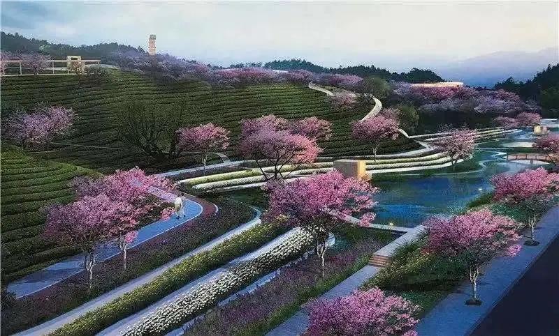 紫荆花园.webp.jpg