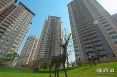 盛天悦景台锦园二期高层及洋房园林欣赏