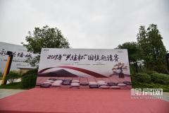 """2019""""兴佳杯""""围棋邀请赛圆满落幕"""
