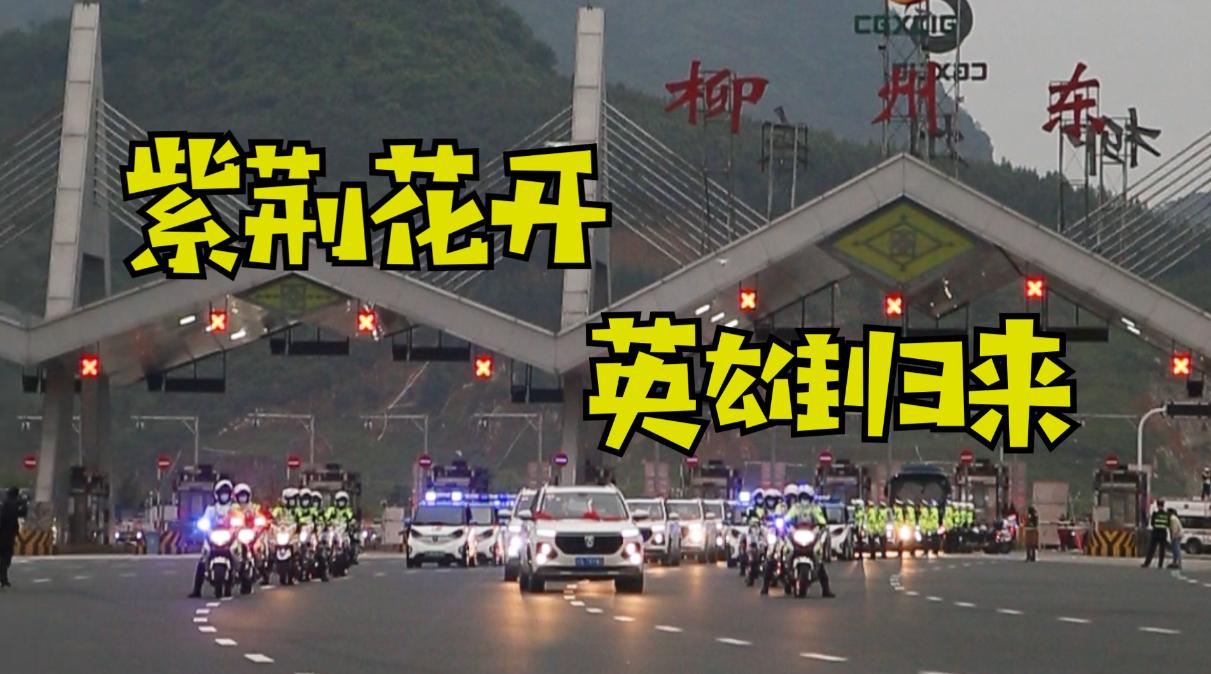 紫荆花开,英雄归来,柳州首批援鄂医疗队回家啦!