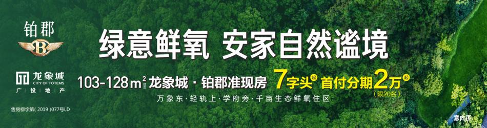 广投·龙象城20200713wap通